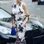Lady Ribbon Tropical Summery Printed Jumpsuit thumbnail 4
