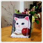 Choo Choo Cat Jetoy - G
