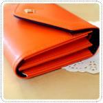 Crown Smart Pouch d - Orange