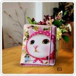 Choo Choo Cat Jetoy - C