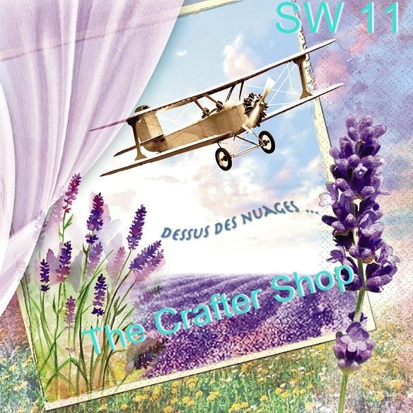 Napkin Sweet Pac (รหัสสินค้า SW-11)