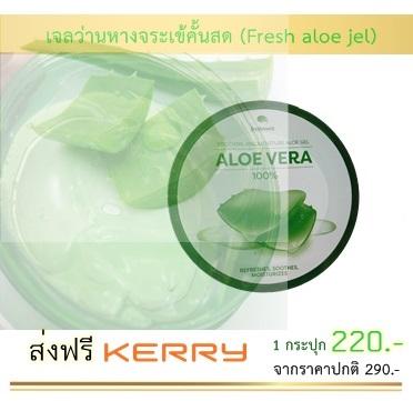 เจลว่านหางจระเข้คั้นสด สำหรับบำรุงผิวหน้าและผิวกาย ( Aloe vera fresh jel )