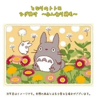 ผ้าห่มผืนเล็ก My Neighbor Totoro