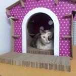 บ้านแมวกระดาษ DIY สีม่วง