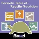 5 องค์ประกอบ อาหารสัตว์เลื้อยคลานที่สมบูรณ์และสมดุล