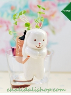"""Gardener """"SWEETIE"""" กระถางเซรามิค ตุ๊กตากระต่าย พร้อมชุดปลูกต้นอ่อนและเมล็ดพันธุ์ Clover"""