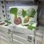 Shinete' Giftset Cream เซทครีมชิเนเต้ (4 ชิ้น) thumbnail 6