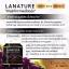 Lanature Grape Seed Extract สารสกัดจากเมล็ดองุ่น thumbnail 13