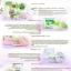 Shinete' Giftset Cream เซทครีมชิเนเต้ (4 ชิ้น) thumbnail 8