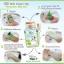 Fern Milk Green Tea Scrub 100 g. สครับน้ำนมแตก ผสมชาเขียว thumbnail 16