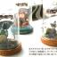 กล่องเพลง Studio Ghibli Music Box (Totoro) thumbnail 3