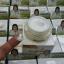 ครีมรวงข้าว Ruang Khao Cream by ตั๊ก ลีลา 15 g. thumbnail 3