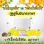 Forest Honey Bee Cream By B'secret 15 g. ครีมน้ำผึ้งป่า ศาสตร์แห่งการฟื้นฟูบำรุงผิวที่ดีที่สุด thumbnail 12