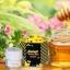 Forest Honey Bee Cream By B'secret 15 g. ครีมน้ำผึ้งป่า ศาสตร์แห่งการฟื้นฟูบำรุงผิวที่ดีที่สุด thumbnail 3