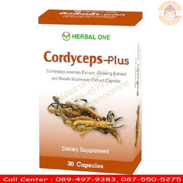 ตังถั่งเช่า พลัส อ้วยอัน Cordyceps Plus Capsule Herbal One