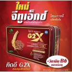 G2X จีทูเอ็กซ์ แบบ 1 กล่อง