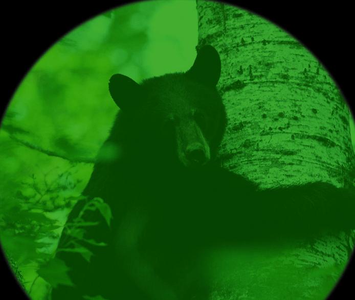 ภาพจากกล้องมองกลางคืน