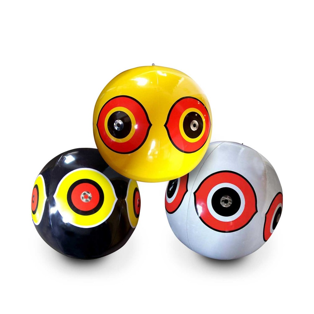บอลไล่นก วิธีไล่นกแบบธรรมชาติ